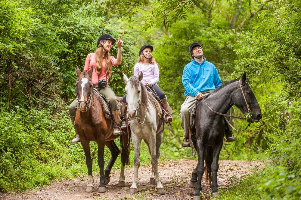 El turismo interno calienta motores: vuelve el Programa PreViaje