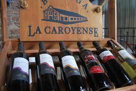 cinco caminos del vino en Argentina